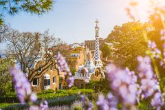 Colorful mosaic building in Park Guell. Violet flower in foreground. Evening warm Sun light flares, Barcelona, Spain.  royalty free stock photography