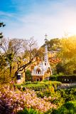 Colorful mosaic building in Park Guell in warm sunset light. Framed by garden flowers in foreground. Barcelona, Spain stock image