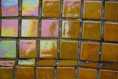 Colored mosaic on a concrete wall Royalty Free Stock Photography