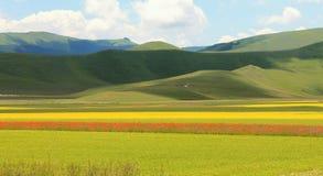 The colorful mountain of Castelluccio di Norcia stock images