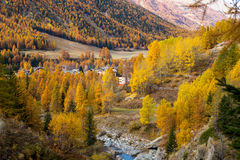 Colorful mountain landscapes, fall colors, mountains, sky and water Stock Images