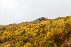 Colorful Mountain Slope of Baihua Mountain� Beijing Royalty Free Stock Photos