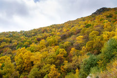Colorful Mountain Slope of Baihua Mountain, Beijing Stock Images