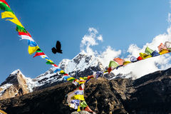 Colorful Mountain View from expedition Base Camp. Bright Mountain View from high Altitude Camp of Himalaya Mountaineering Expedition Nepalese colorful Prayer Royalty Free Stock Photos