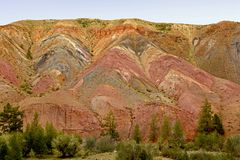 Colorful mountains of Altai. Siberian mountain landscape. Russia royalty free stock image