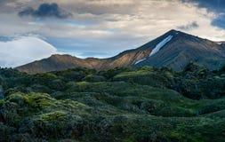 Colorful mountains in Landmannalaugar stock images