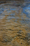 Colorful Mud Flats - vertical Royalty Free Stock Photos