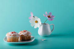 Colorful muffin on saucer with flower. Aqua color background Royalty Free Stock Photo