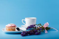 Colorful muffin on saucer with flowers Royalty Free Stock Photography