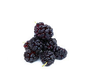 Colorful mulberry on a white background Royalty Free Stock Photography