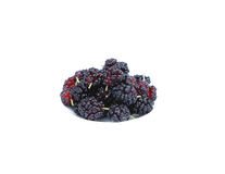 Colorful mulberry on a white background Royalty Free Stock Images