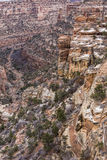 Colorful Mule Canyon Royalty Free Stock Photography