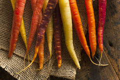 Colorful Multi Colored Raw Carrots Royalty Free Stock Images