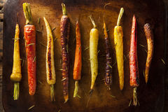 Colorful Multi Colored Roasted Carrots Royalty Free Stock Photography