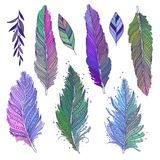 Colorful feathers set. Colorful multicolored feathers and leaves isolated set, hand drawn art, boho style, vector art royalty free illustration