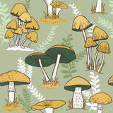 Colorful mushrooms seamless   pattern Royalty Free Stock Photography