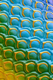 Colorful Naga scale pattern Royalty Free Stock Image