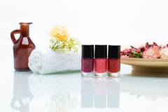 Colorful nail polishes and Dried Flowers Royalty Free Stock Image