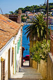 Colorful narrow street in Mali Losinj. Dalmatia, Croatia Stock Image