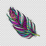 Colorful native Feather Stock Images