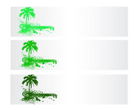Colorful Nature Vector Banner. Colorful Nature and Palm Vector Banner Royalty Free Stock Images
