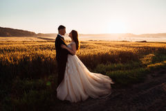 Colorful nature surrounds comely hugging wedding couple Royalty Free Stock Photos
