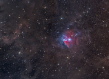 Colorful Nebula in Orion Royalty Free Stock Images