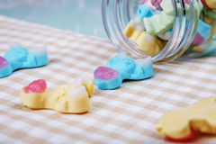 Colorful neon gummy a cow candies Stock Photos