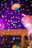 Colorful Neon Lights and Feather Royalty Free Stock Photo