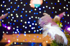 Colorful Neon Lights and Feather Stock Photography
