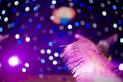 Colorful Neon lights with one feather Royalty Free Stock Photo