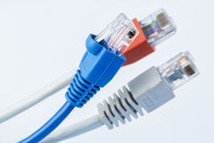 Colorful network cable with RJ45 connectors Royalty Free Stock Images