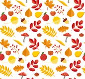 COLORFUL AND NICE FLORAL AUTUMN PATTERN. An autumnal design made of fall leaves and season fruits in bright colors vector illustration