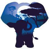 African Night with Elephant Stock Photography