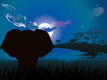 African Night with Elephant Royalty Free Stock Image