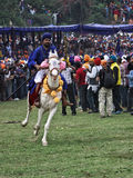 A colorful Nihang Sikh riding a white horse during Hola Mohalla, India Royalty Free Stock Photography
