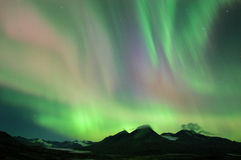 Colorful northern lights Stock Images