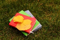 Colorful notebook. For business and study with autumn leafs on the grass Royalty Free Stock Image