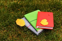Colorful notebook. For business and study with autumn leafs on the grass Stock Images
