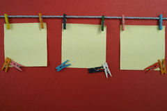 Colorful notes on clothespins, copy space Stock Image