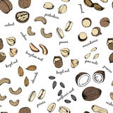 Colorful Nuts set seamless pattern Royalty Free Stock Images