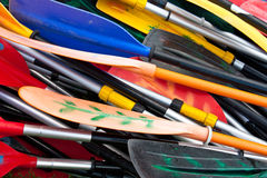 Colorful oars Stock Image