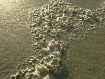 Colorful Ocean Wave Foam Bubbles on Beach Sand. Royalty Free Stock Photography