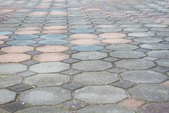 Colorful octagonal brick paving ground with perspective view Stock Images