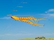 Colorful Octopus Kite Flying Stock Photo