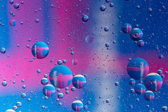 Colorful oil bubbles on a water surface abstract background with red. Color Stock Images