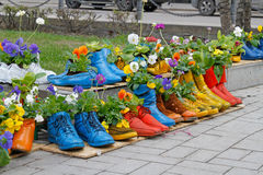 Colorful old boots Royalty Free Stock Images