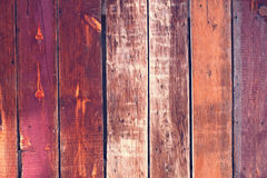 Colorful Old Wood Background - Pink Stock Image