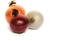 Colorful onions Stock Image
