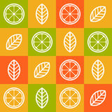 Colorful orange citrus seamless pattern. Vector abstract tile ba Stock Photography